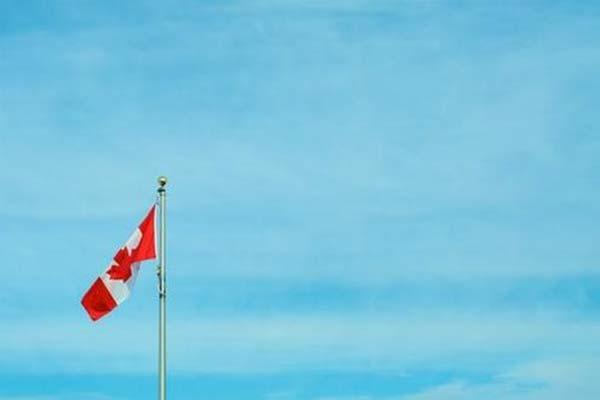 Canadian examination license